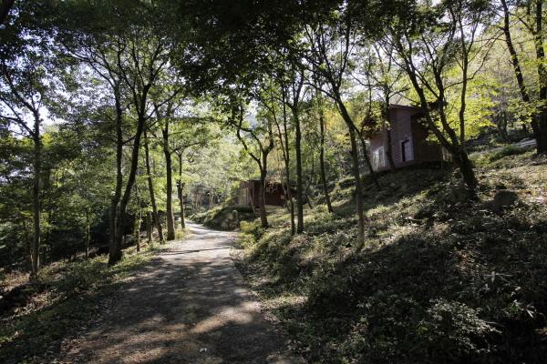 운장산자연휴양림2.jpg